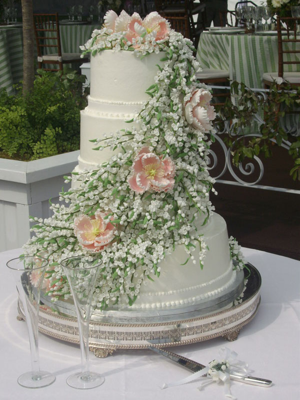 Images Of Big Cake : Dioli s Wedding Cakes